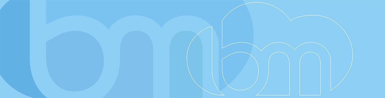 Blue Maven Group - Your IT Solution